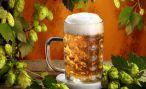 Польза пива для кожи
