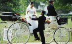 Модная свадьба 2013-2014